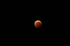 平成26年10月8日 皆既月食 3