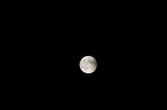 平成26年10月8日 皆既月食 6