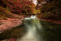 八重滝の紅葉④