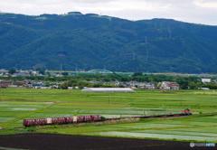 2017.06.03 今こそ仙台へ(14):憧れの石巻貨物を俯瞰(*^^*)