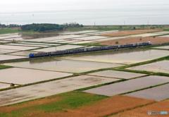 2017.05.31 水が引かれた田園を往く
