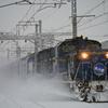 2015.02.10 剛雪列車(2)