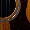 アコースティックギター01