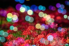 ~Sparkle bubble~