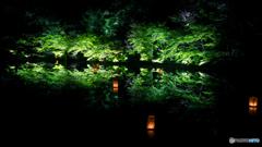 ~Night Green~