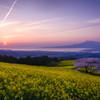 日の出を待つ春