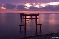 夜明けの海中鳥居