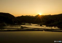 棚田の朝陽