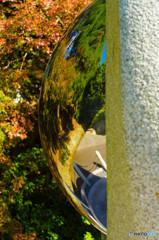 秋色のリフレ