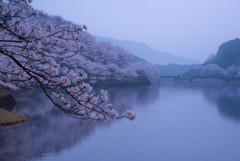 夜明けのダム湖にて