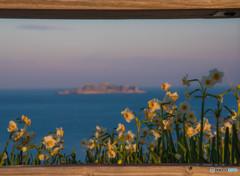 花と軍艦島の夜明け
