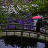 誘いの花の園