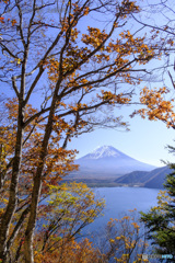 深まりゆく秋の空に映えて