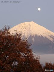 晩秋の煌月