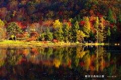盛秋の観音沼