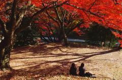 秋の影法師