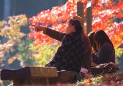 それぞれの秋の陽