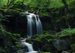 創造の滝:全景