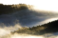 雲上の秘め事