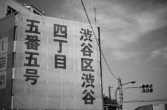 「渋谷区渋谷四丁目五番五号」