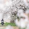 春うららかに小径を走る