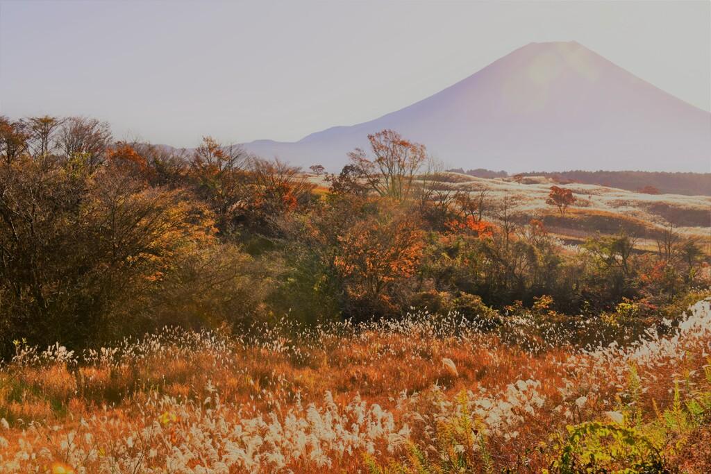 富士山2020.11.14