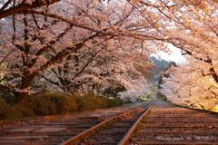 インクライン ~春の夜明け~