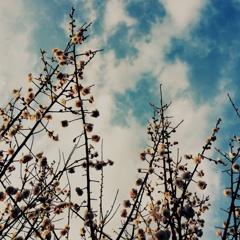 すこし寂しくて見上げた空