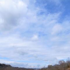 のらねこ鳴いたっぽくない空の色(笑)でもちょっと寂しげblue