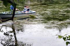 水草が繁茂する池―2