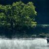 新緑の湖畔#2