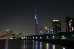 百道で夜景('14.6.13)