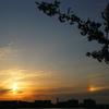 河川敷にて ~rainbow~