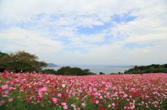 能古島にて(2014,10)-2