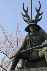 忠勝桜-1