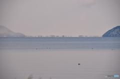 2016.1.25琵琶湖の浮島現象#1