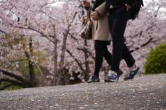一緒に歩こう