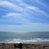 本日の浜田浜