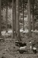 vespa camp 06
