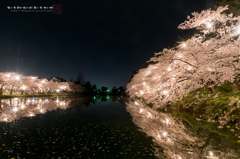 桜 story 1 2015