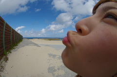 愛する青い海と空と変な人