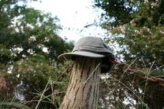 始まりの帽子