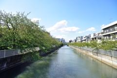 江東区は水の町