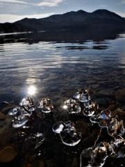 水辺の宝石