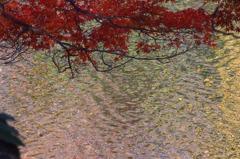水面のアート 2
