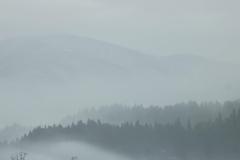 霞みか雲か 2019