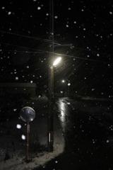 夜更けの雪