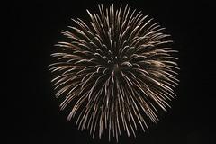 2009年とりで利根川大花火(3)
