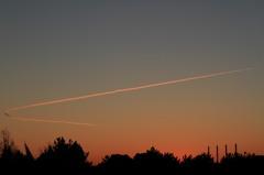 日の出に映える一筋の雲