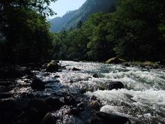 夏の石狩川